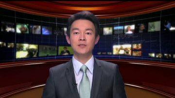 【中國禁聞】華南虎假照案 遭撤官員復原職