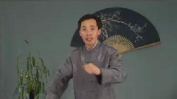 評書:岳飛傳(187)