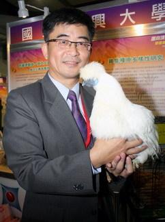 唐代乌骨鸡  兴大致力保种