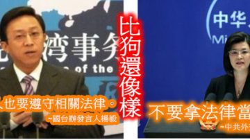 童文薰:違了黨意的伊能靜,哪裡不守法律?