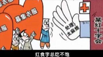 官办慈善红与黑 始作俑者郭美美(视频)