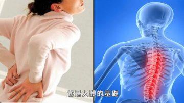 【走近韓醫】身體的支柱 – 脊椎