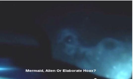 """海底惊现神秘""""美人鱼"""" 面目酷似外星人"""