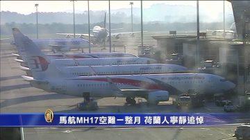 马航MH17空难满月 荷兰民众宁静追悼