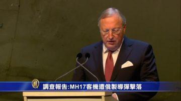 调查报告:MH17客机遭俄制导弹击落