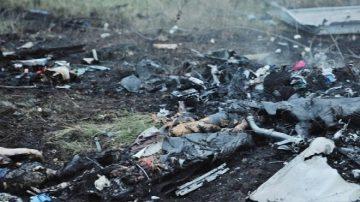 马航MH17调查员  先行披露调查结果
