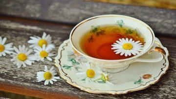 【美食天堂】中国饮茶秘密指南