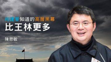 陳思敏:肖建華背後「最大的支撐」