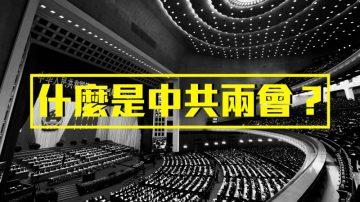 """中共年度两会 你知道台湾两千万人""""被代表""""了吗?"""