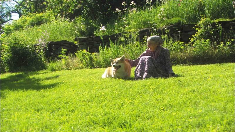 日本人最憧憬女性第一名竟然是她? 让身心灵都获得疗愈的《塔莎杜朵,一个人的田园生活》即将推出