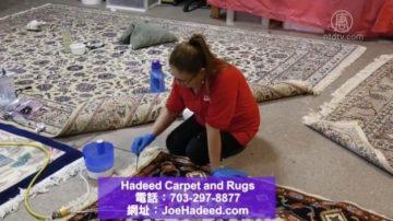 根除积尘细菌 专业地毯清洗大不同