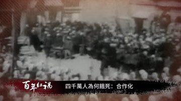 【百年紅禍】四千萬人為何餓死:合作化