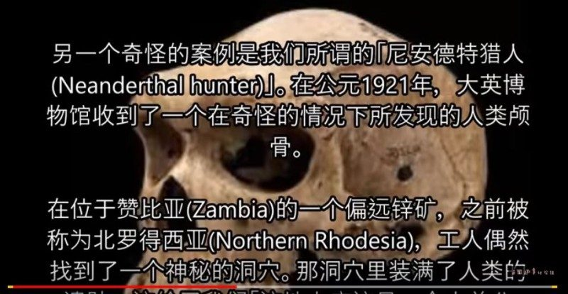 万年前的头骨上面竟然出现了现代的子弹孔?(视频)
