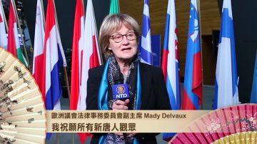 欧洲议会法律事务委员会副主席 愿中国人争取自由人权