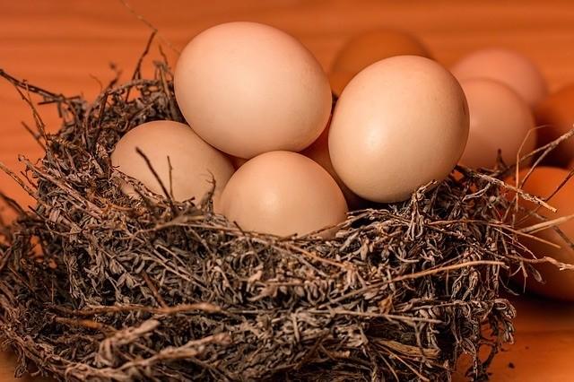 """用""""它""""煮鸡蛋居然比肉还香"""