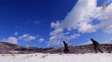 【你好韩国】冬季特色旅行