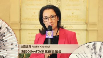 法国议员Fadila Khattabi祝愿观众朋友新年快乐