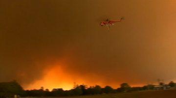 澳洲紐卡斯爾爆發林火 機場被迫關閉