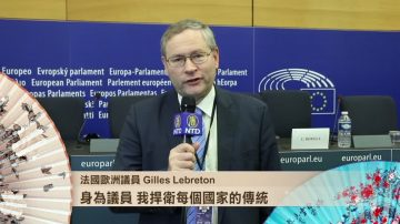 法国欧洲议员 Gilles Lebreton 捍卫传统 祝2018新年快乐