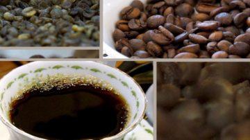 【你好韓國】咖啡之中有自然