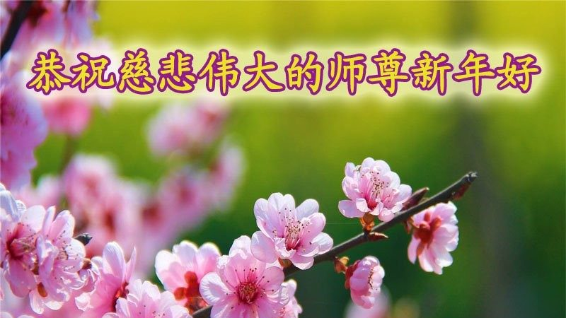 政府部门、公检法司、军人法轮功学员给李洪志大师拜年
