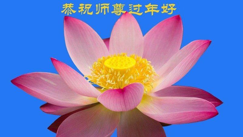 大庆法轮功学员恭祝李洪志大师新年好