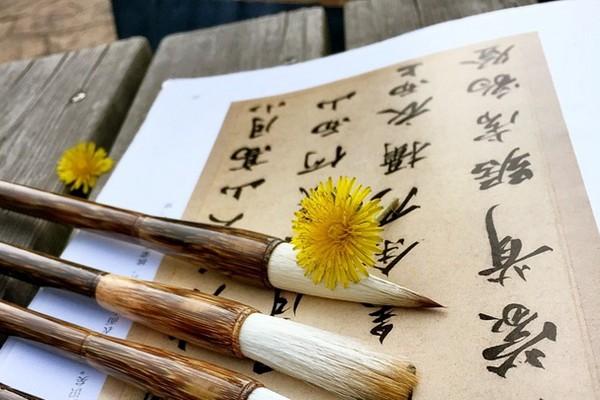 中国笔划最多的汉字有160划 99.9%人不认识(组图)