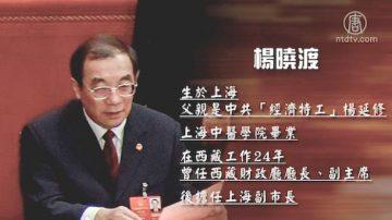 【熱點解讀】楊曉渡成黑馬和中共黨務機構大改組