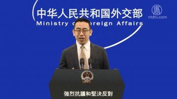 【嚴真點評】外交部大實話:中美貿易戰怎麼打?