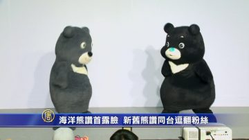 海洋熊赞首露脸!新旧熊赞同台逗翻粉丝