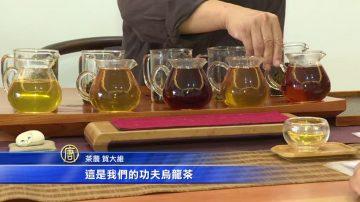 茶草共生 20国人士赞赏会呼吸的土地
