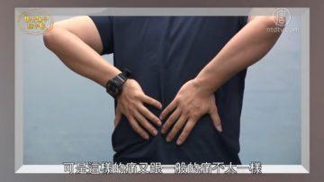 談古論今話中醫:僵直性脊椎炎 中醫治療有法寶