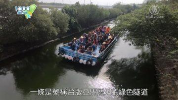1000步的繽紛台灣:搭膠筏遊台版亞馬遜河