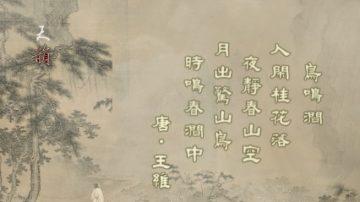天韵舞春风:王维-鸟鸣涧