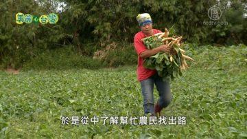 美麗心台灣:海海人生 海鹽文化結合在地農產