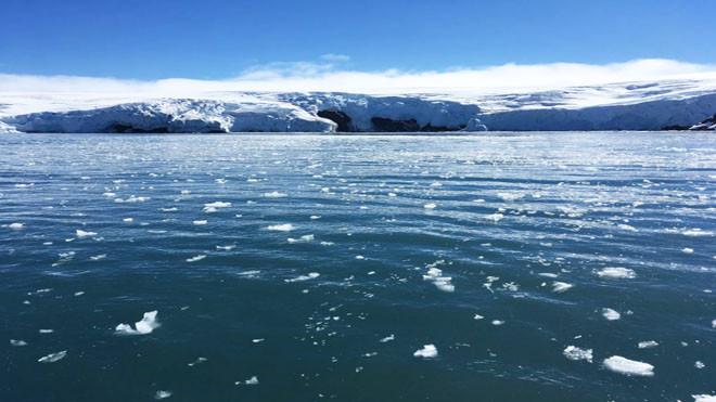 南极洲近3兆吨冰消融 海平面上升8毫米