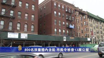 紐約800名孩童體內含鉛 市長下令檢查13萬公屋