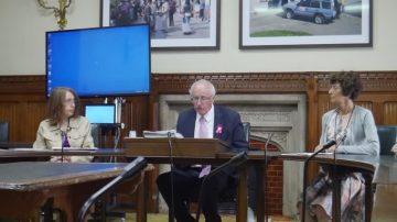 反迫害19年 英國議會研討會聲援法輪功