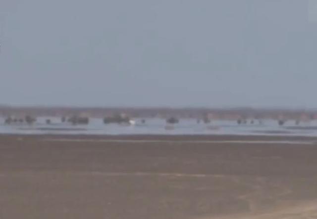 波澜水鸟就在眼前!新疆沙漠海市蜃楼超生动(视频)