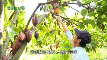 美麗心台灣:賴錫賢的可可巧克力夢