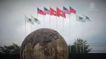 【微视频】台商在越南打出中华民国国旗自保