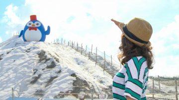 1000步的缤纷台湾:登顶盐山 体验雪国风情
