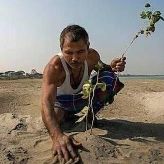 印度森林人40年来每天种树 成野生动物栖身地