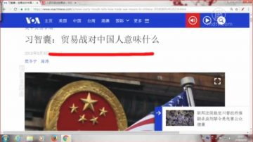 【石涛评述】习智囊:贸易战对中国人意味着什么 (上)