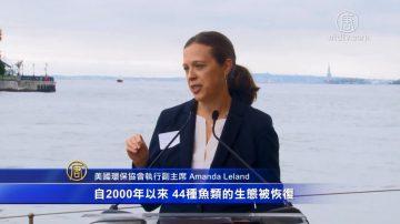 全美可持續發展漁業蓬勃 環境與經濟雙贏