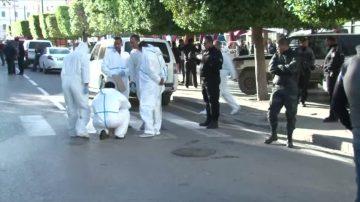 突尼斯首都自杀式炸弹袭击 20伤