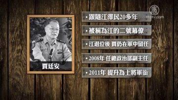 胡錦濤7字評價 江澤民大秘賈廷安陞官夢碎