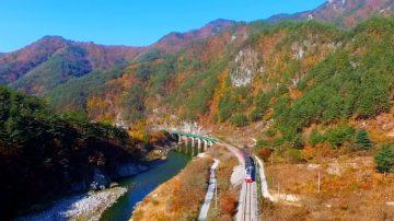 【你好韓國】純淨自然的故鄉——奉化 第一部 走進自然