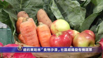 """纽约东哈林""""食物沙漠""""社区组织发有机蔬果"""