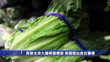 長葉生菜大腸桿菌爆發 美國發出食安警報